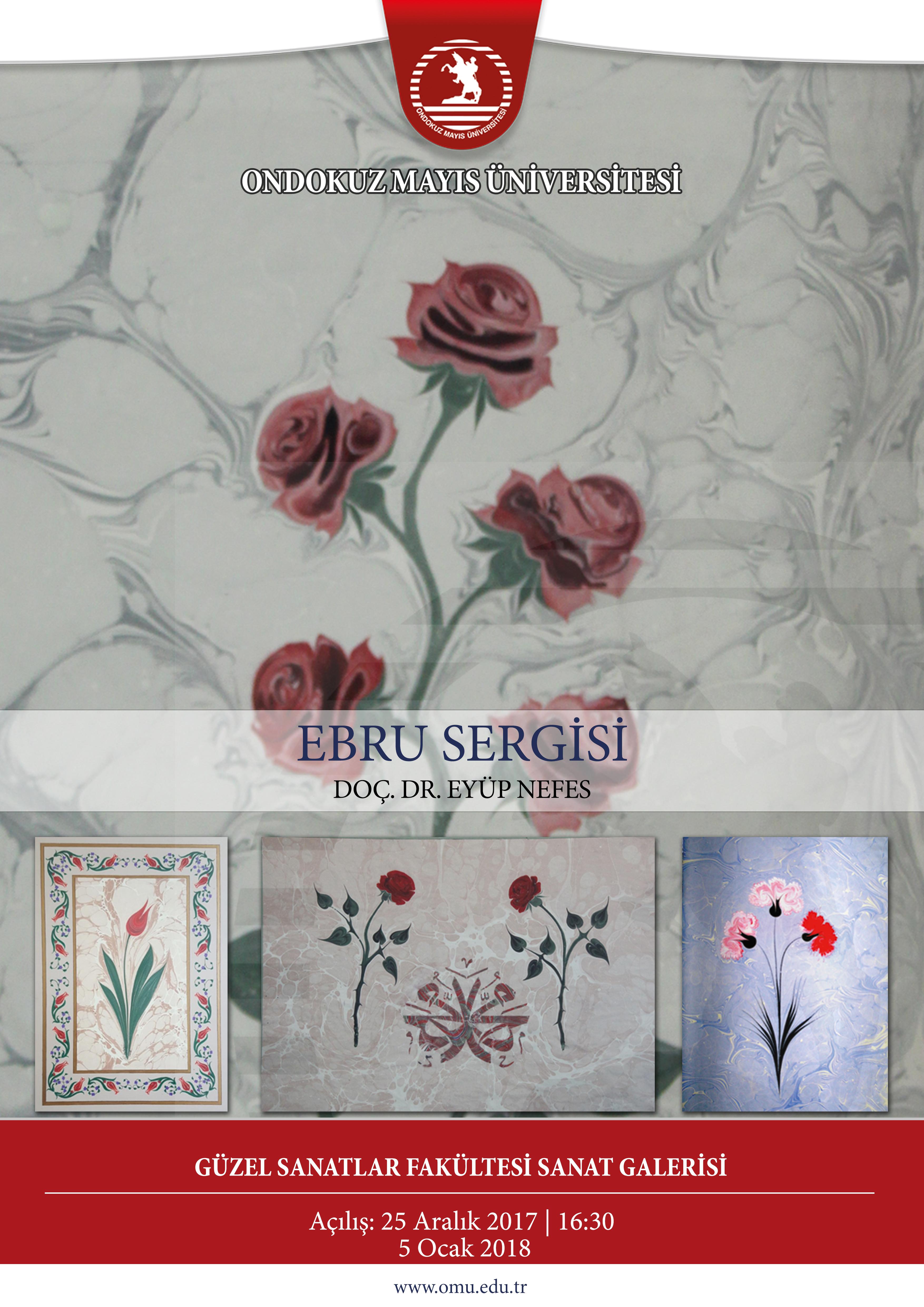 http://www.omu.edu.tr/sites/default/files/ebru_sergisia3.jpg